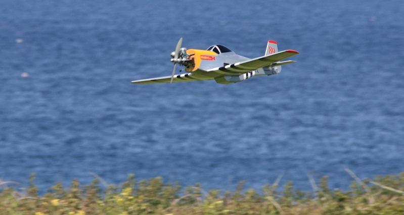 Warbird 16